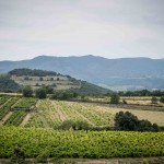 Gift voucher wine tours - VINOTOUR