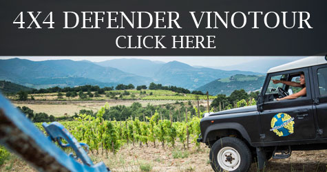 VINOTOUR, wine tours in Languedoc-Roussillon, southern France